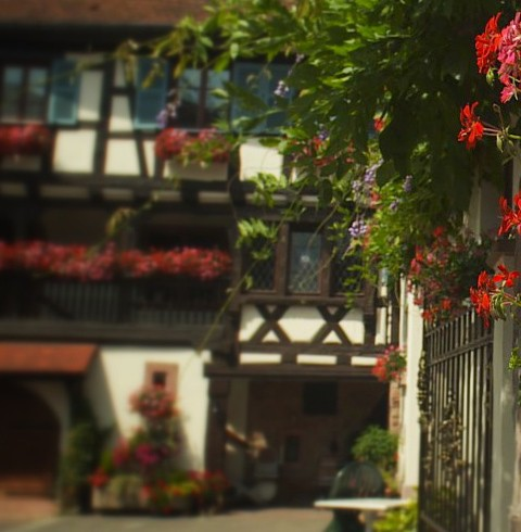 Our cottages in Eguisheim